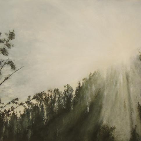 Facing the sun,oil on canvas, 100/80 cm, 2017  