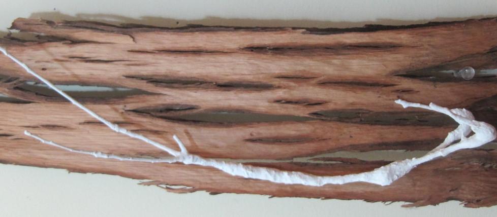 Diver, twigs & tree bark, 2016