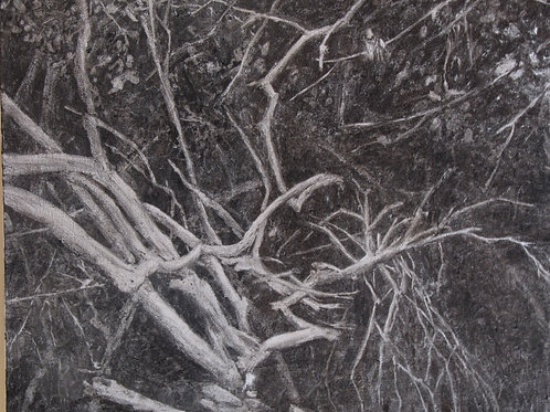 Trees in darkness 1