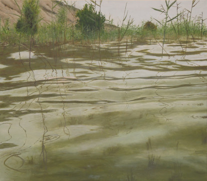 Water, oil on canvas, 52/60 cm, 2013