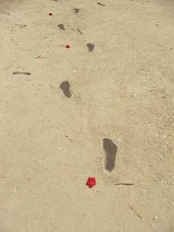 Leaving, soil,Artificial flowers, 2014