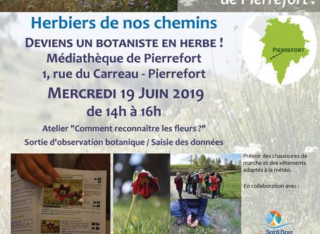 """Venez participer à l'animation """"Botaniste en herbe"""" à Pierrefort"""