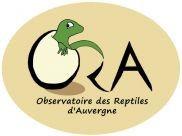 ORA1.jpg