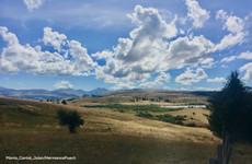 Mercredi de la Biodiversité : Changement climatique : la nature, notre meilleure alliée ?