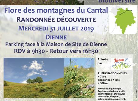 Venez Découvrir la Flore des montagnes Cantaliennes !