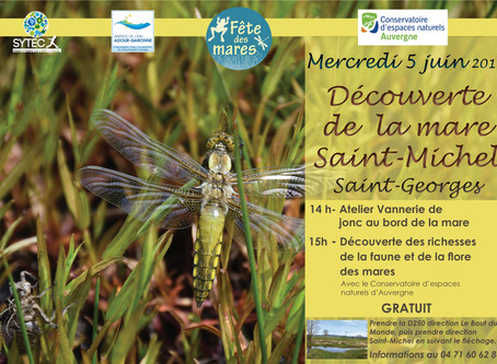 Le 5 juin à Saint-Georges, le SYTEC fête les mares !