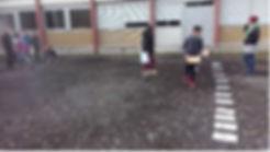 anim_insecte-murat-collège.JPG