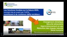 Mercredi de la Biodiversité : la nature notre meilleure alliée face au changement climatique