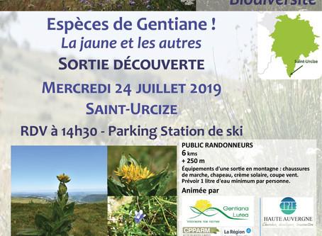 "Animation ""Espèces de Gentiane !"" - Mercredi 24 juillet 2019"