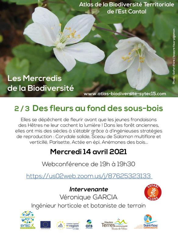 """Webconférence 2/3 -  """"Des fleurs au fond des bois"""" - Mercredi 14 avril"""