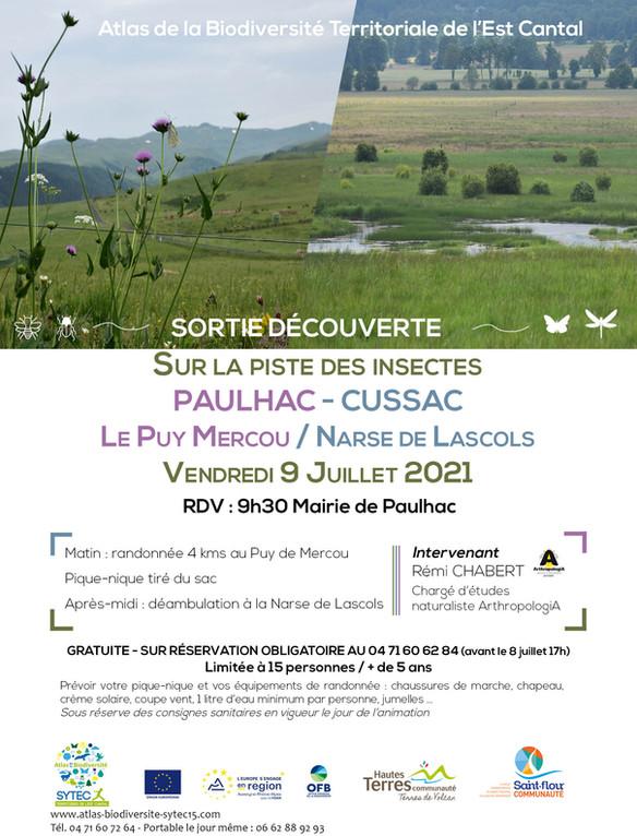 """DEFI INSECTES - Sortie Découverte """"Sur la piste des insectes"""" Paulhac / Cussac"""