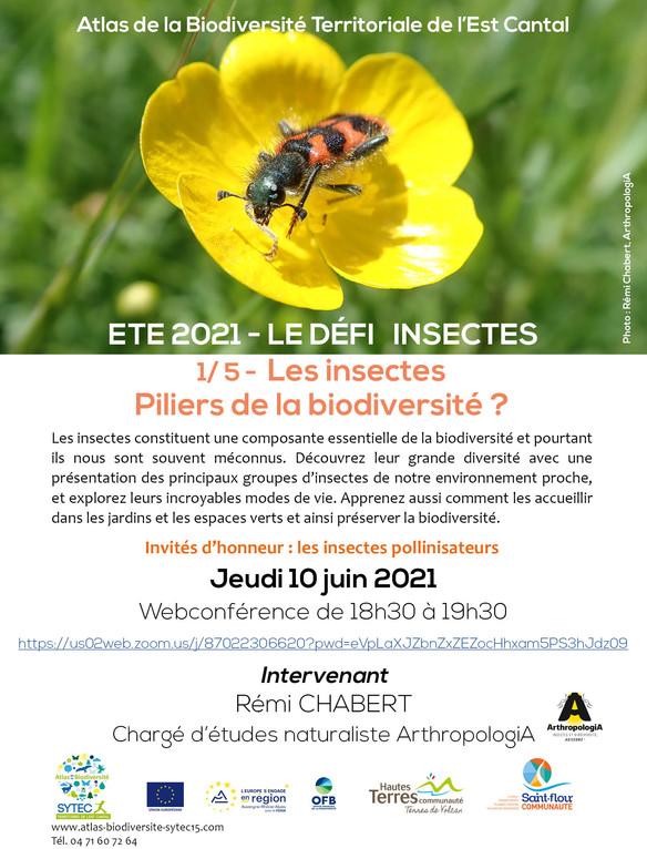WEBCONFERENCE : Les insectes - Piliers de la biodiversité ? Jeudi 10 juin 2021