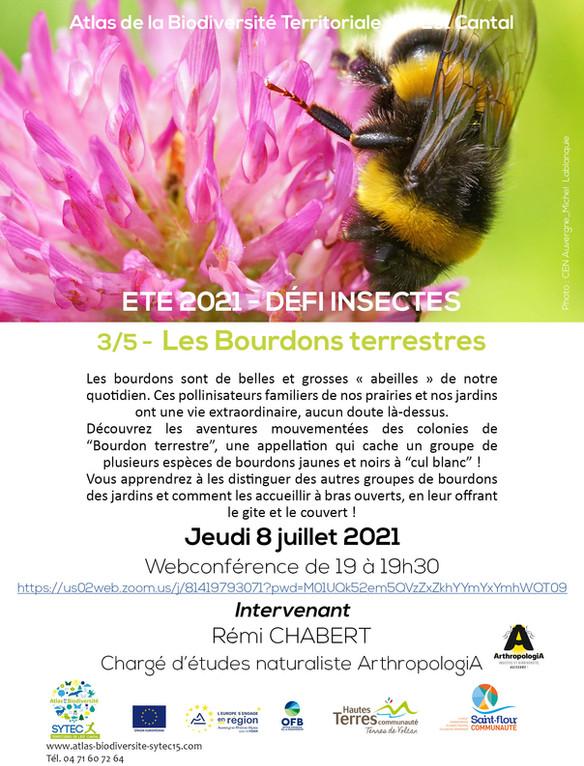 WEBCONFERENCE - Série « A la découverte des insectes » - Les BOURDONS TERRESTRES