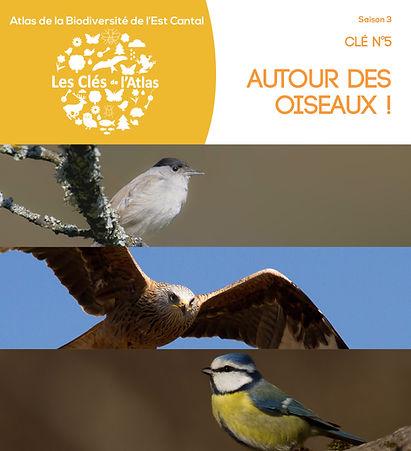 Clé 5 AUTOUR DES OISEAUX_COUV.jpg