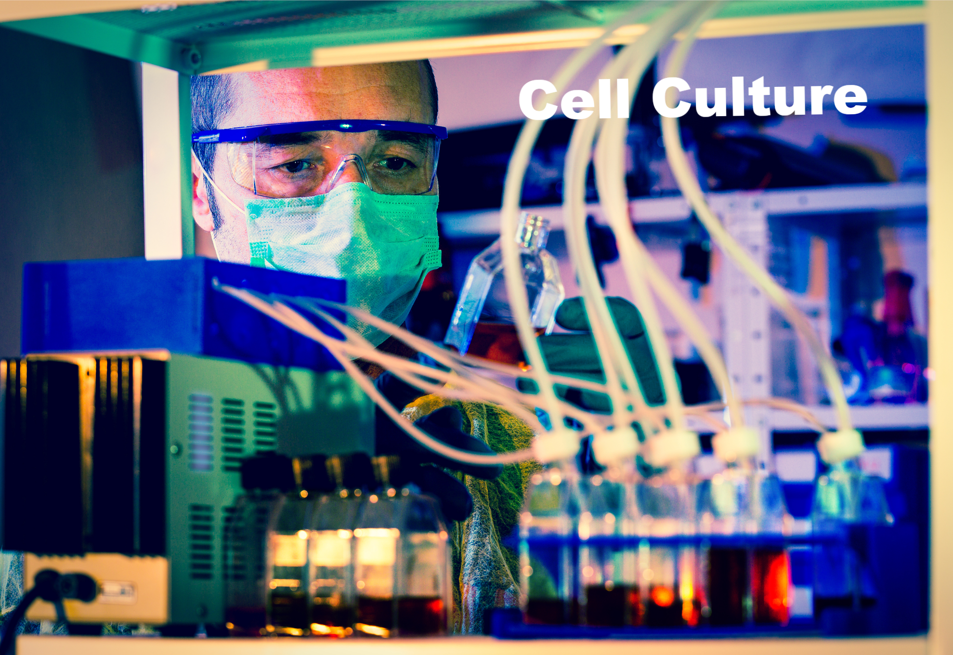 Checking rise Cell Culture installation_edited.jpg