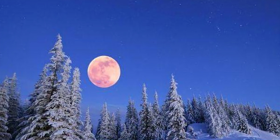 Full Moon Snowshoe!