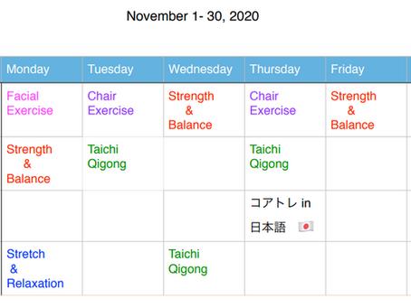 Online Class Schedule in November