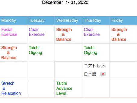 Online Class Schedule in December