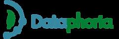 Dataphoria_Logo_Horizontal.png