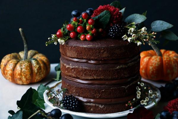 Vegan and Gluten Free Chocolate Pumpkin Cake