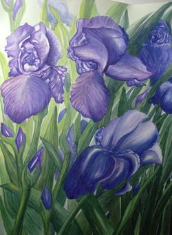 watercolour, _Purple Pretties_.jpg