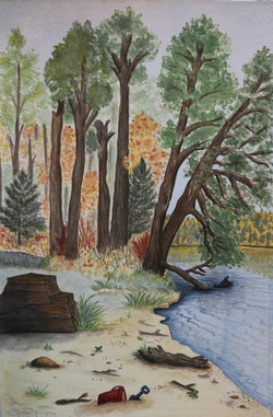 Lakeside Picnic Area Alberta
