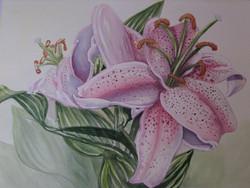 watercolour, _Stargazer Lillies_.jpg