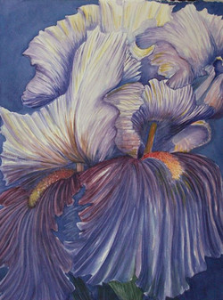 watercolour, _Floral or Fowl__.jpg