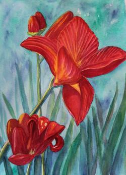 Brilliant Red Lilies on Aqua