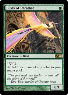 Birds of Paradise (CoreSet 2011)