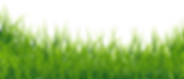 Landscape-PNG-Free-Download.png