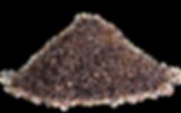marine-algae-1193978__180.png