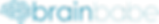LOGO_brain-babe_750x113.png