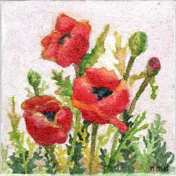 Poppies, watercolor by Nan Daly