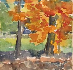 Dedham Autumn, watercolor by Cindy Mootz