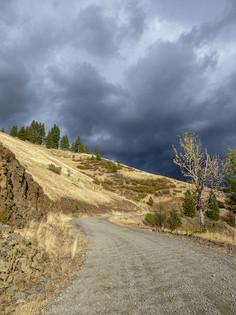 Tiger Creek Road