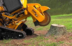 Contractor Tips: Why Grind The Stump?