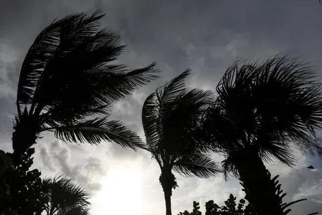 hurricane_prep2.jpg