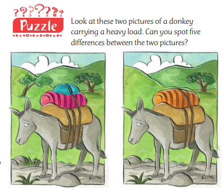Spot the Difference puzzle - Donkey with a heavy load