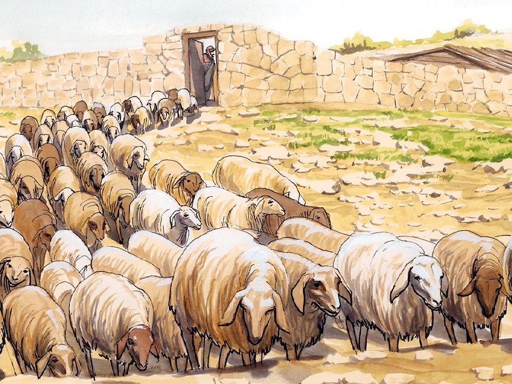 Flock of sheep. Image courtesy of Good News Productions International and College Press Publishing.