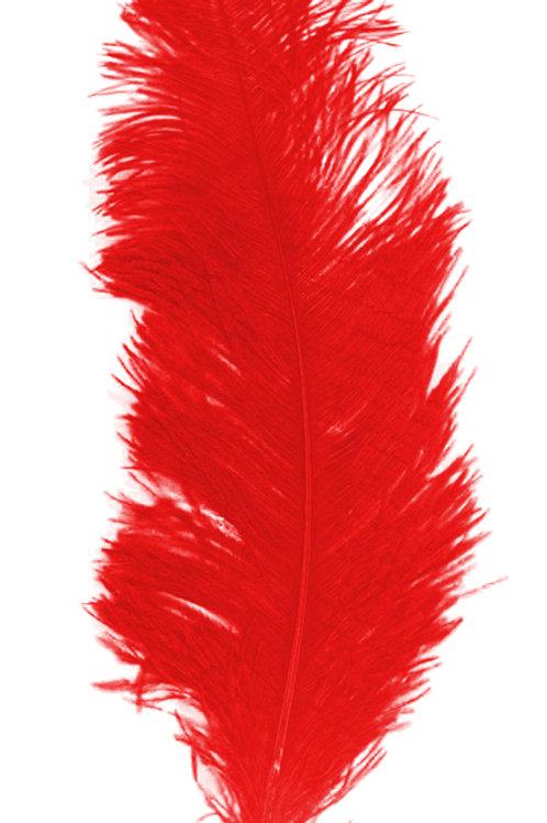 Location grandes plumes d'autruche rouges
