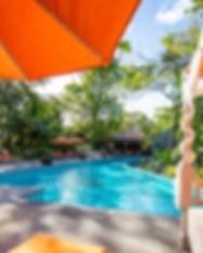 Pool_Bodhi_Tree_Yoga_Resort.jpeg