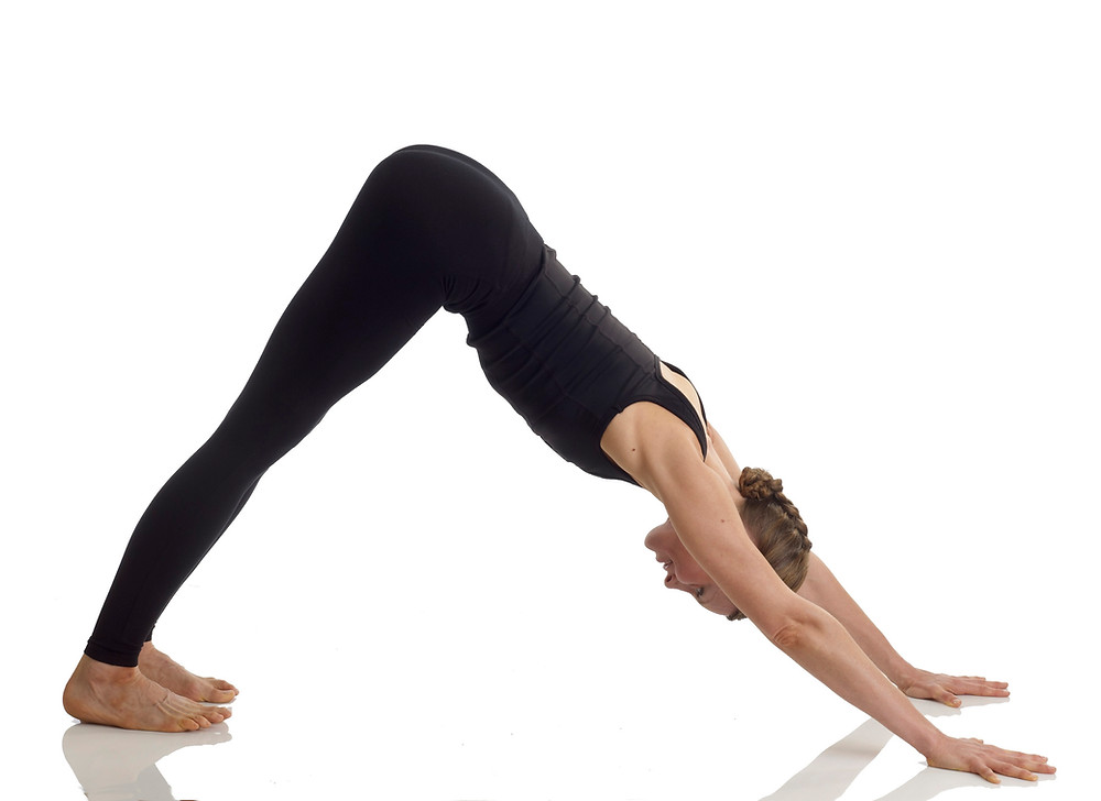 Twisted Sister Yoga in Downward Facing Dog Pose