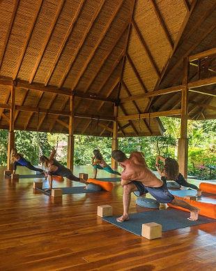 Bodhi_Tree_Twisted_Sister_Yoga_Retreat.j