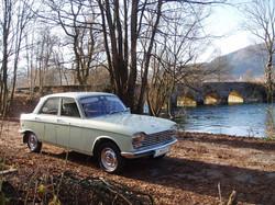 Duo Limonium Peugeot 204