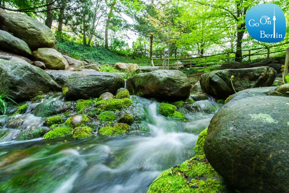 מפל מים בגן בריץ - Britzer Garten