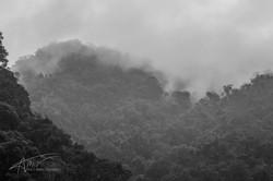 Wulai Mountains 3