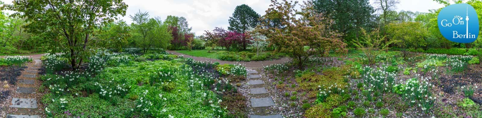 בריצר גארטן - Britzer Garten