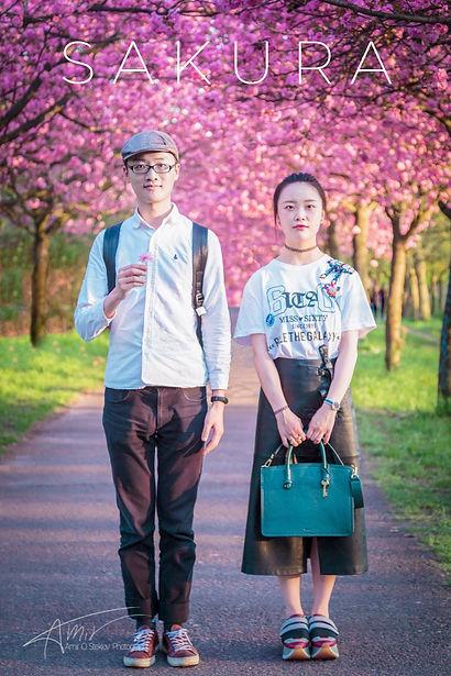 Sakura Film.jpg