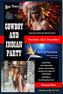 Birds New Years Cowboy and Indian Party